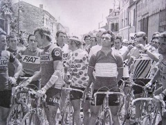 Guess which one Hinault is